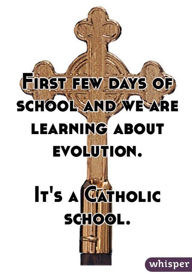 First few days of school and we are learning about evolution.  It's a Catholic school.