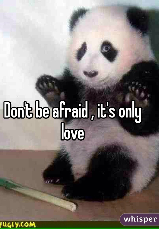 Don't be afraid , it's only love