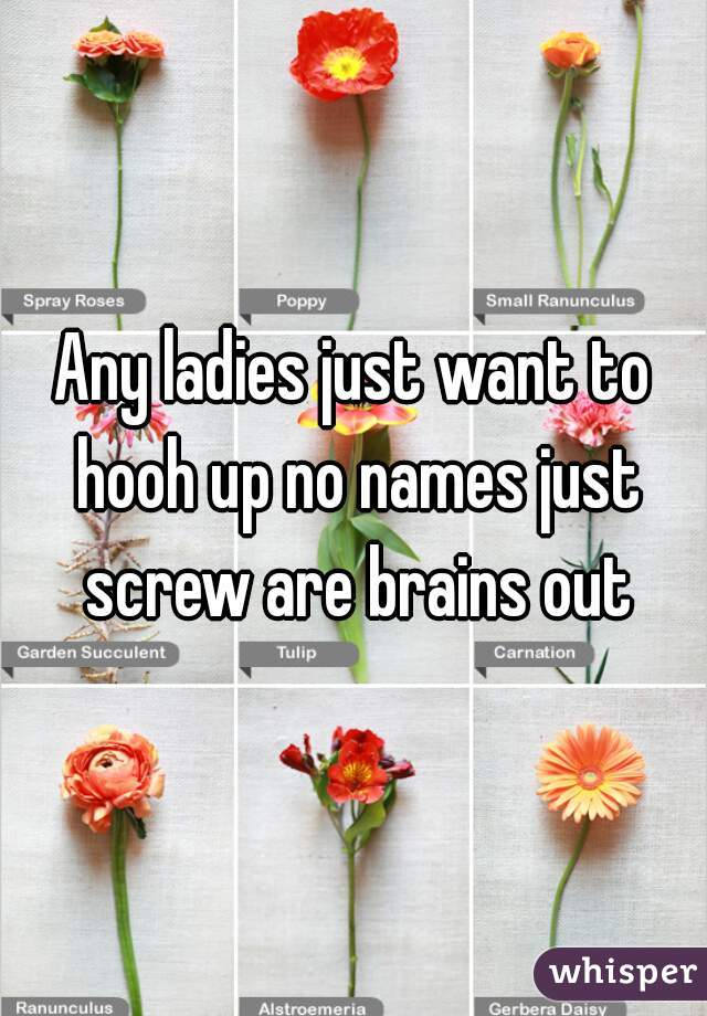 Any ladies just want to hooh up no names just screw are brains out