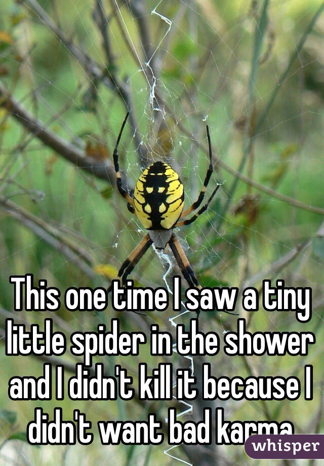 This one time I saw a tiny little spider in the shower and I didn't kill it because I didn't want bad karma