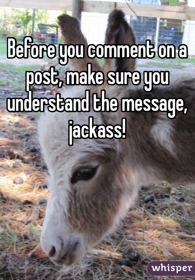 Before you comment on a post, make sure you understand the message, jackass!