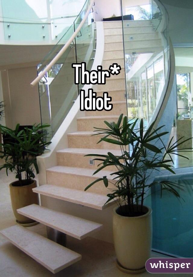 Their* Idiot