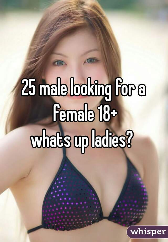 25 male looking for a female 18+ whats up ladies?