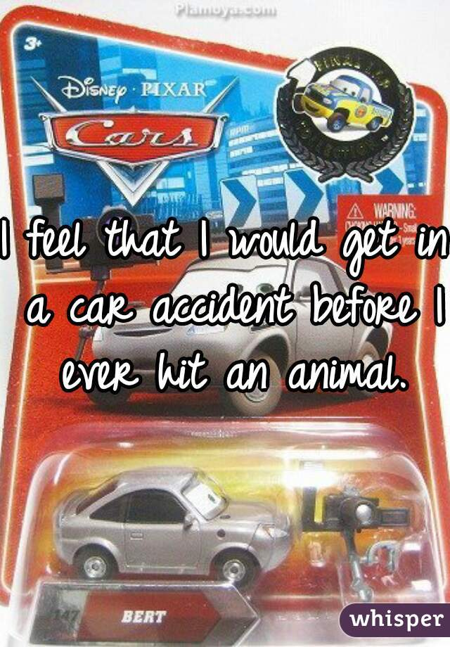 I feel that I would get in a car accident before I ever hit an animal.