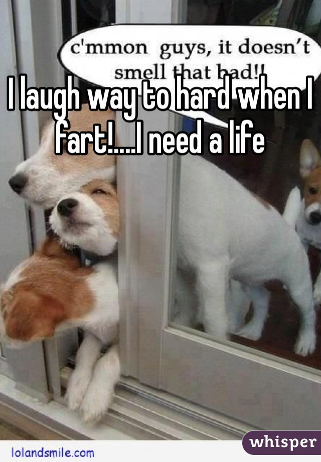 I laugh way to hard when I fart!....I need a life