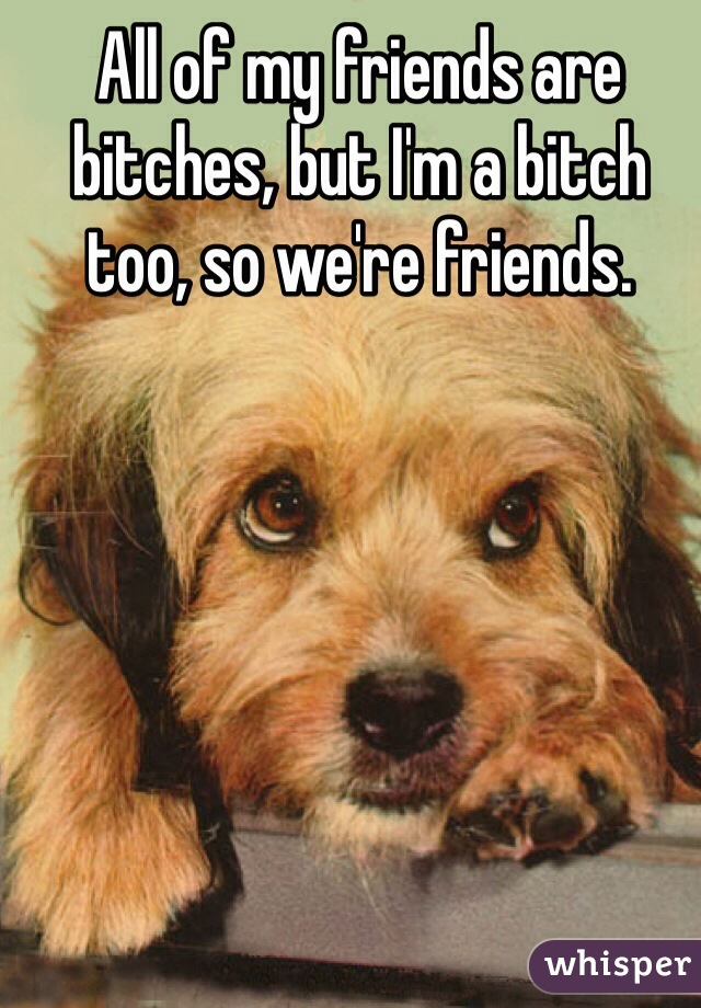 All of my friends are bitches, but I'm a bitch too, so we're friends.