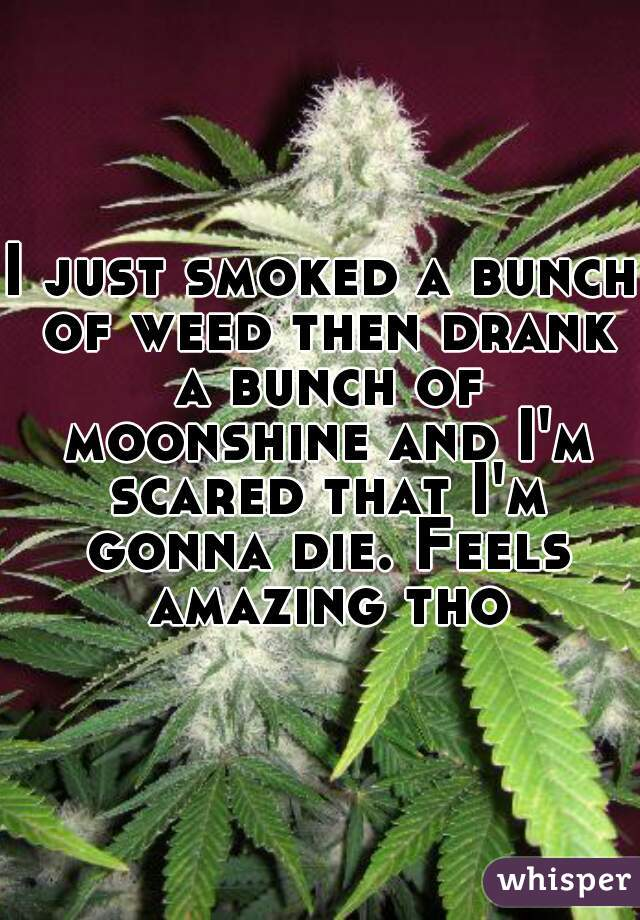 I just smoked a bunch of weed then drank a bunch of moonshine and I'm scared that I'm gonna die. Feels amazing tho