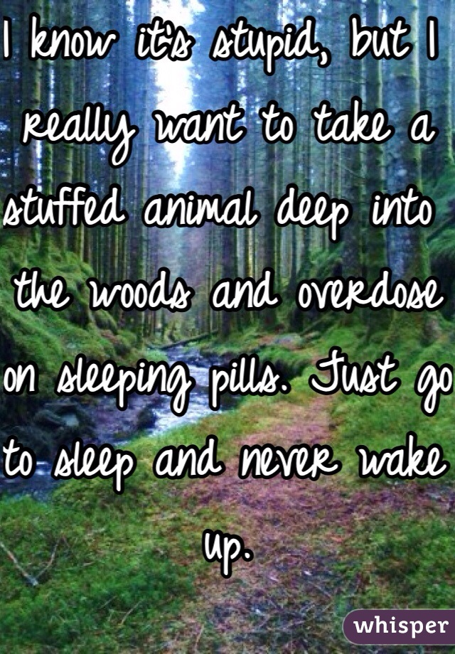 I know it's stupid, but I really want to take a stuffed animal deep into the woods and overdose on sleeping pills. Just go to sleep and never wake up.