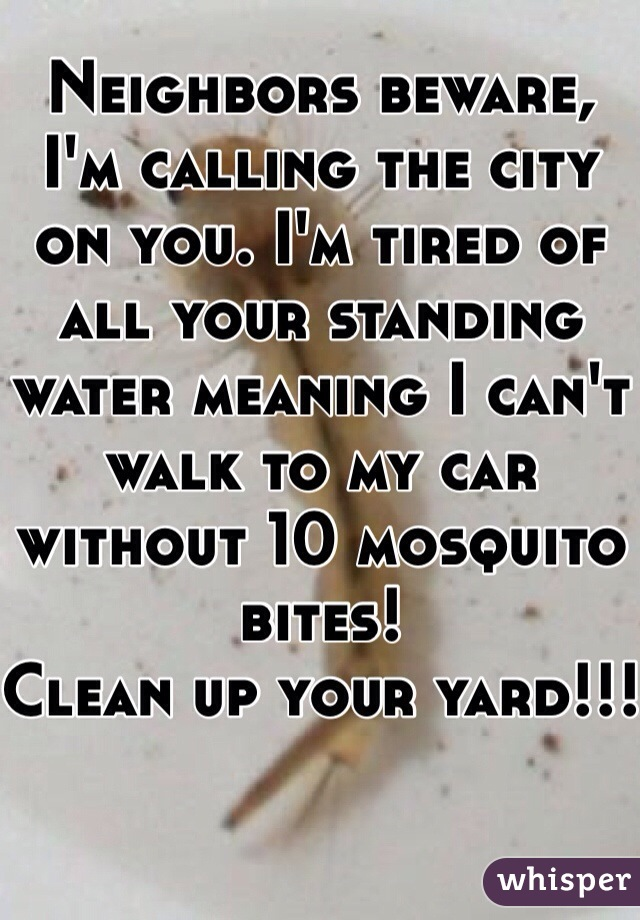 Neighbors beware, I'm calling the city on you. I'm tired of all your standing water meaning I can't walk to my car without 10 mosquito bites!  Clean up your yard!!!