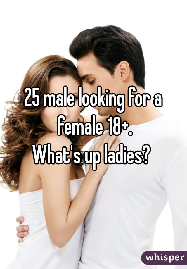 25 male looking for a female 18+.  What's up ladies?