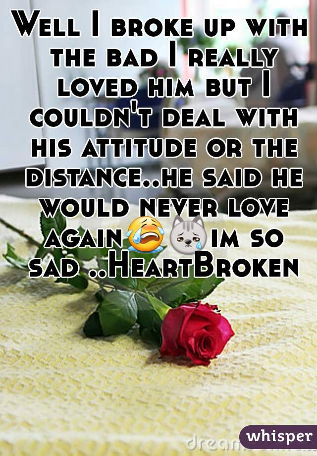 Well I broke up with the bad I really loved him but I couldn't deal with his attitude or the distance..he said he would never love again😭😿im so sad ..HeartBroken