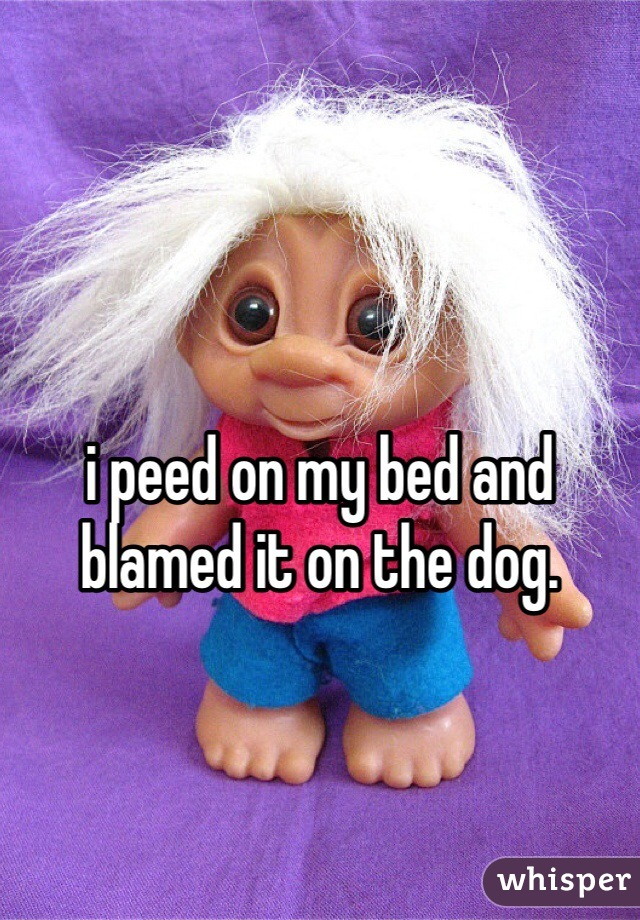 i peed on my bed and blamed it on the dog.