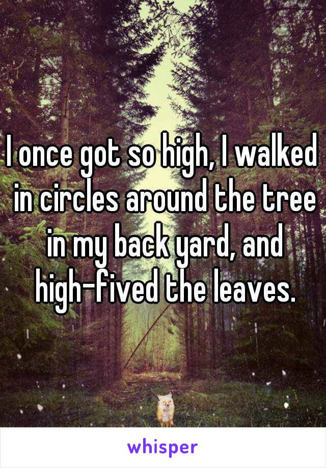 I once got so high, I walked in circles around the tree in my back yard, and high-fived the leaves.