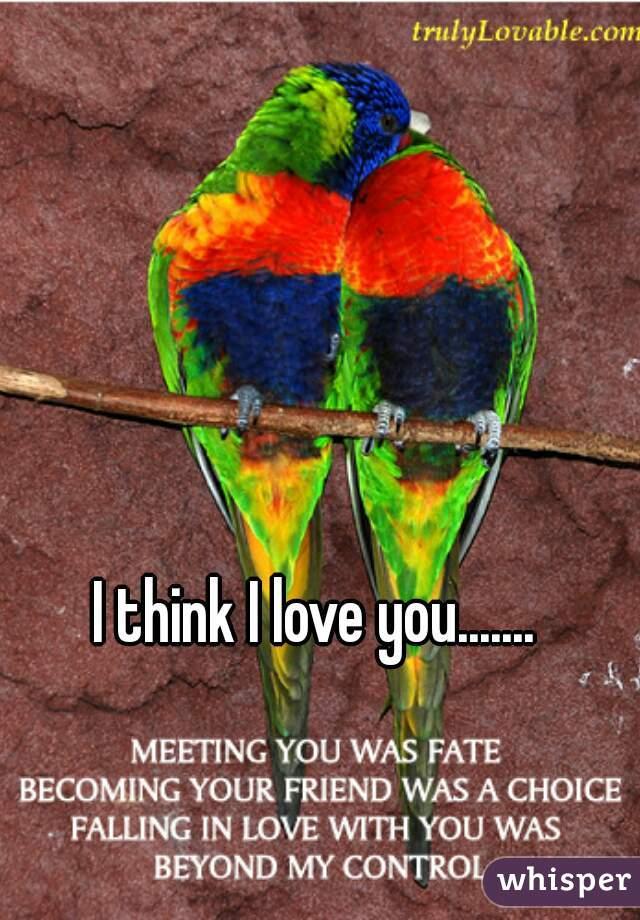 I think I love you.......