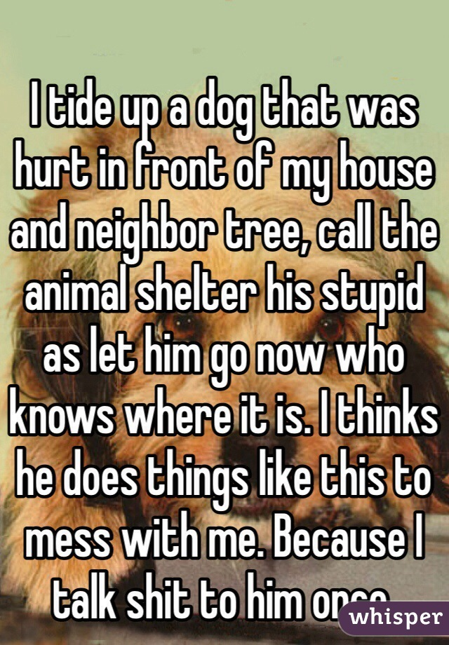 I tide up a dog that was hurt in front of my house and neighbor tree, call the animal shelter his stupid as let him go now who knows where it is. I thinks he does things like this to mess with me. Because I talk shit to him once.
