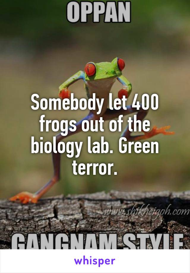 Somebody let 400 frogs out of the biology lab. Green terror.