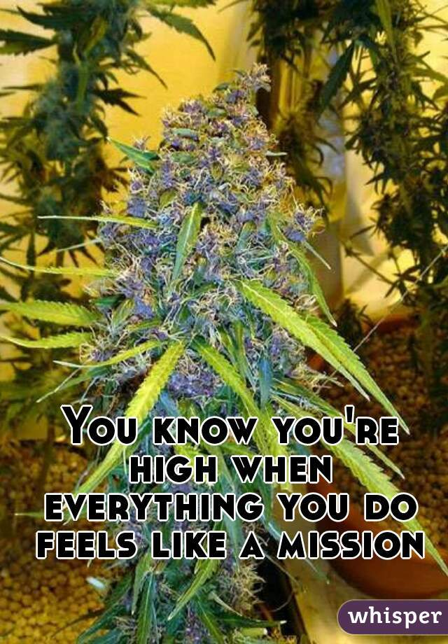 You know you're high when everything you do feels like a mission