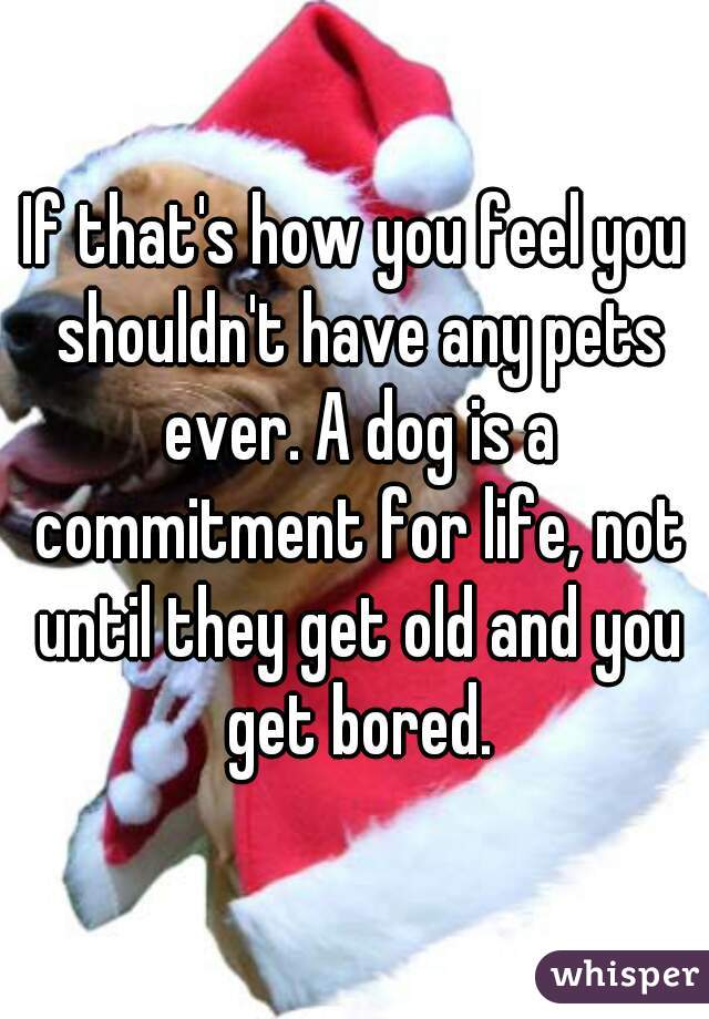If that's how you feel you shouldn't have any pets ever. A dog is a commitment for life, not until they get old and you get bored.