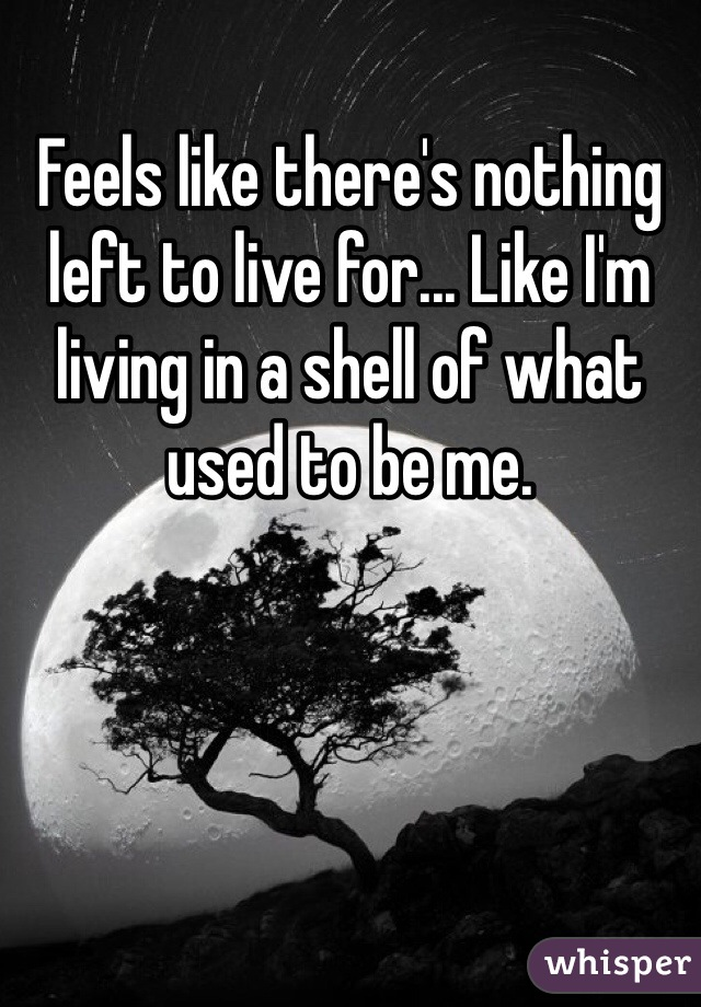 Feels like there's nothing left to live for... Like I'm living in a shell of what used to be me.