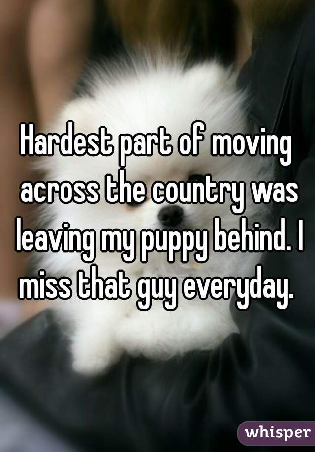 Hardest part of moving across the country was leaving my puppy behind. I miss that guy everyday.