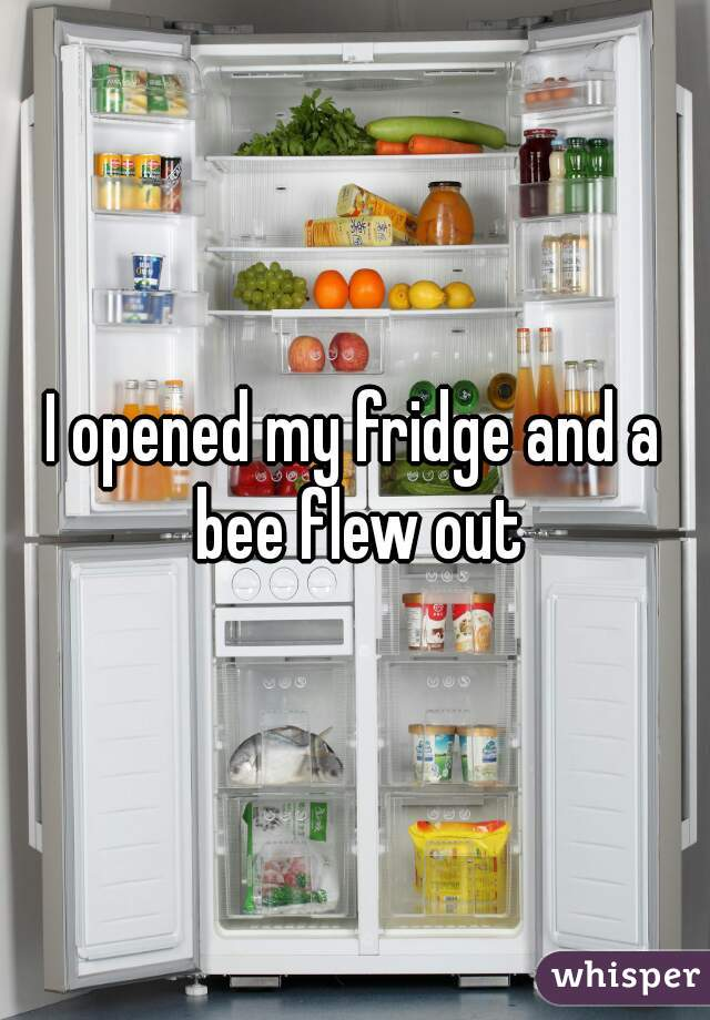 I opened my fridge and a bee flew out