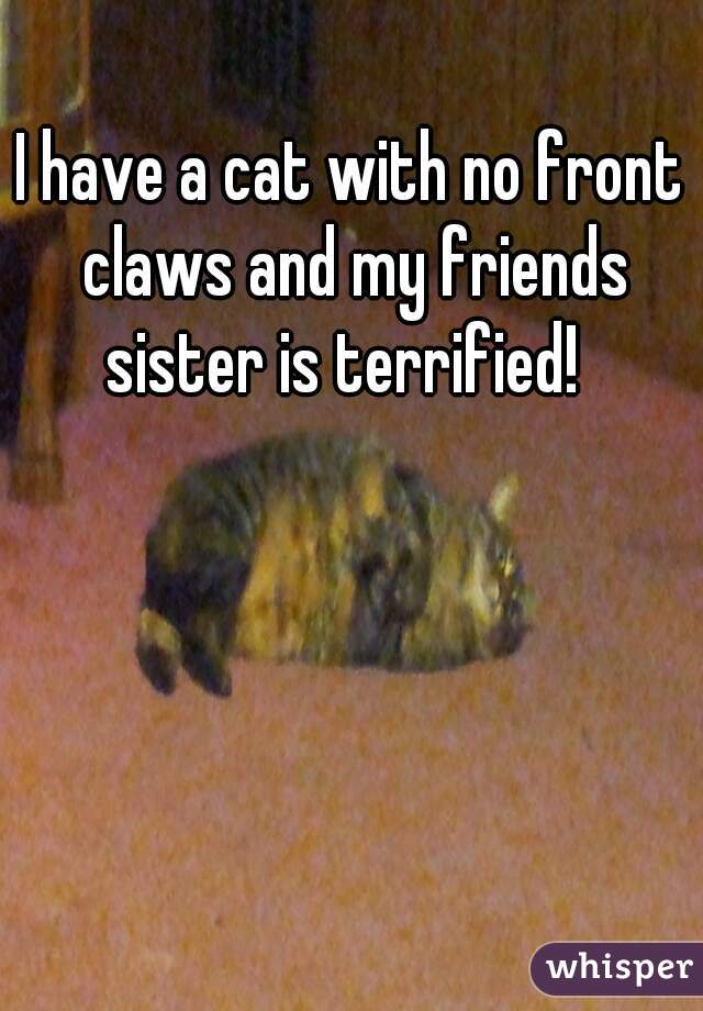 I have a cat with no front claws and my friends sister is terrified!