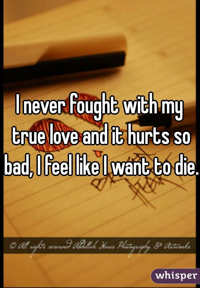 I never fought with my true love and it hurts so bad, I feel like I want to die.
