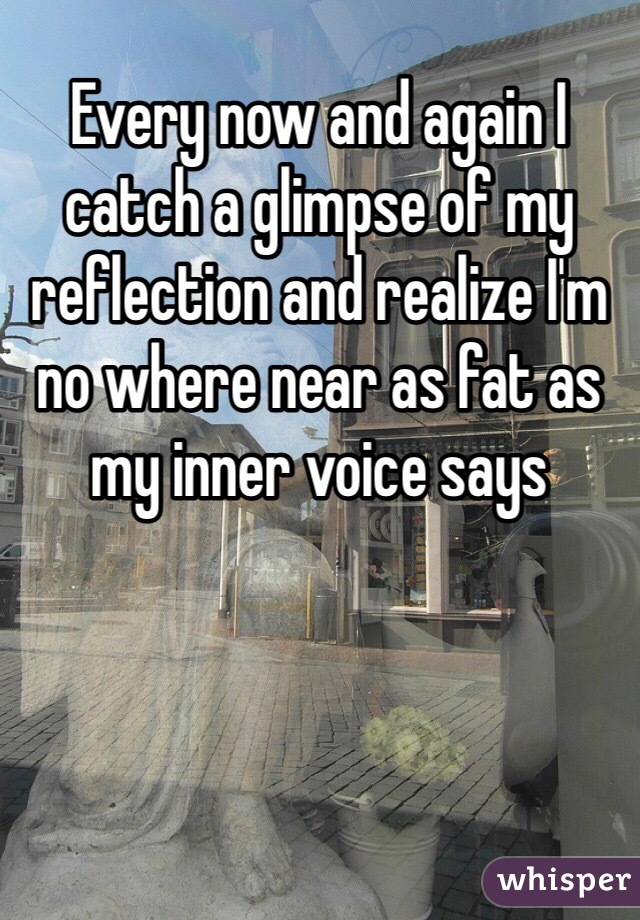 Every now and again I catch a glimpse of my reflection and realize I'm no where near as fat as my inner voice says