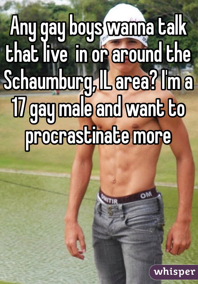 Any gay boys wanna talk that live  in or around the Schaumburg, IL area? I'm a 17 gay male and want to procrastinate more