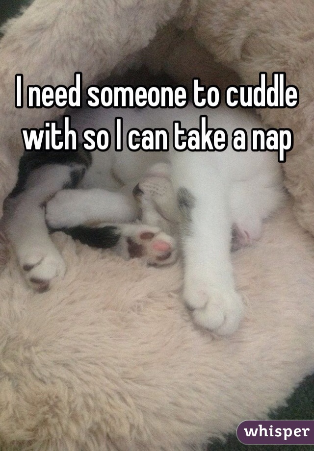 I need someone to cuddle with so I can take a nap