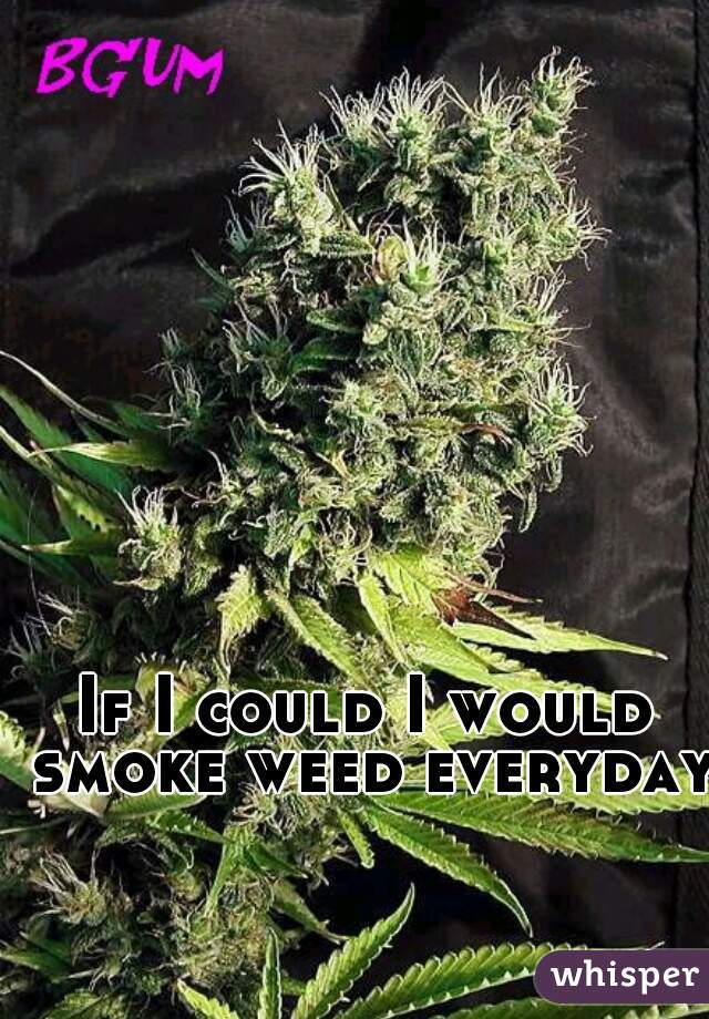 If I could I would smoke weed everyday