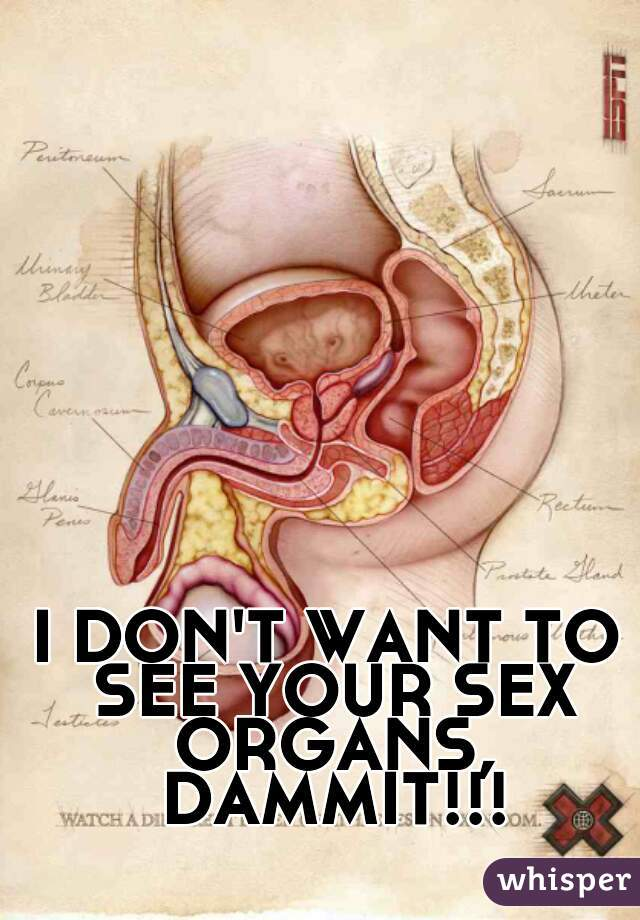 I DON'T WANT TO SEE YOUR SEX ORGANS, DAMMIT!!!