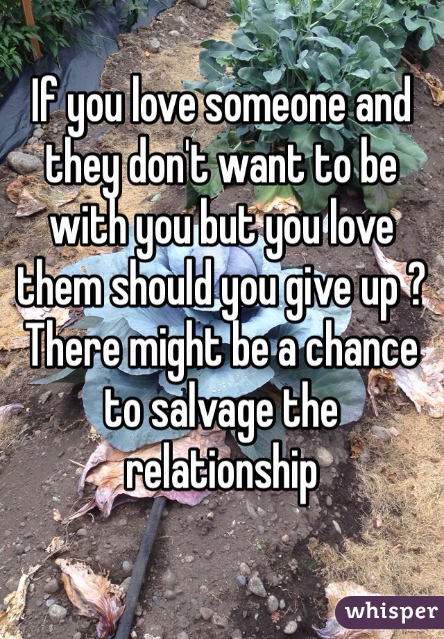 If you love someone and they don't want to be with you but you love them should you give up ? There might be a chance to salvage the relationship