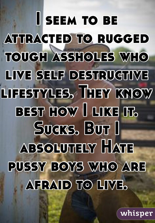 I seem to be attracted to rugged tough assholes who live self destructive lifestyles. They know best how I like it. Sucks. But I absolutely Hate pussy boys who are afraid to live.