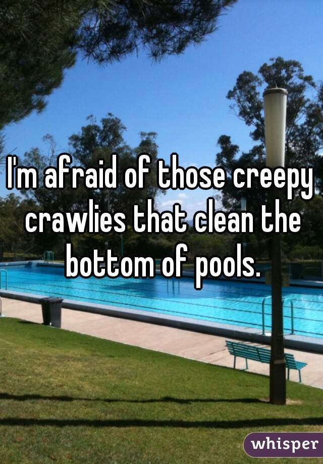 I'm afraid of those creepy crawlies that clean the bottom of pools.