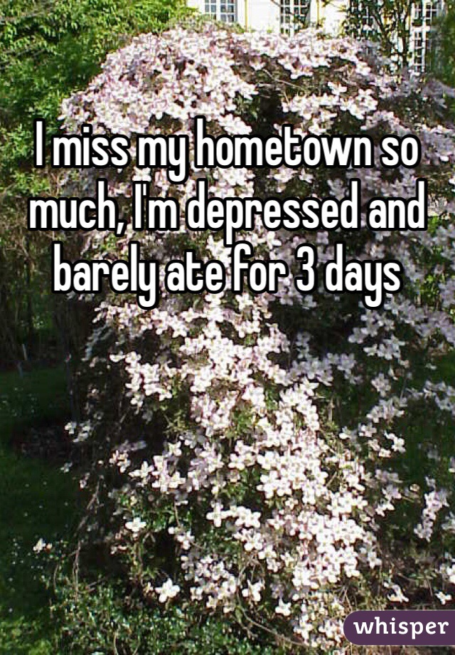 I miss my hometown so much, I'm depressed and barely ate for 3 days