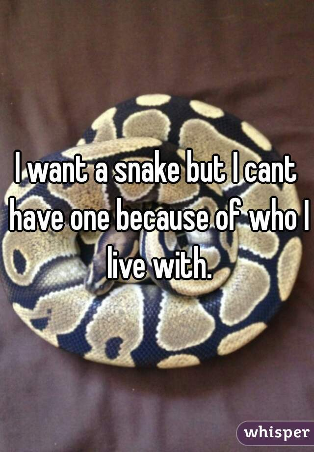 I want a snake but I cant have one because of who I live with.