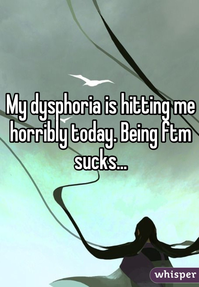 My dysphoria is hitting me horribly today. Being ftm sucks...