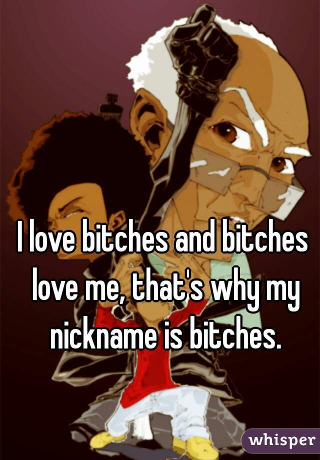 I love bitches and bitches love me, that's why my nickname is bitches.