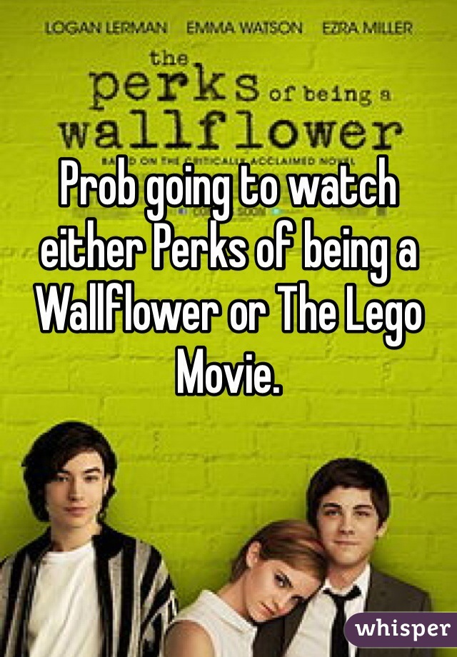 Prob going to watch either Perks of being a Wallflower or The Lego Movie.