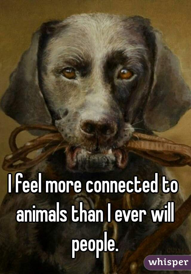 I feel more connected to animals than I ever will people.