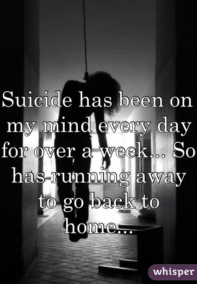 Suicide has been on my mind every day for over a week... So has running away to go back to home...