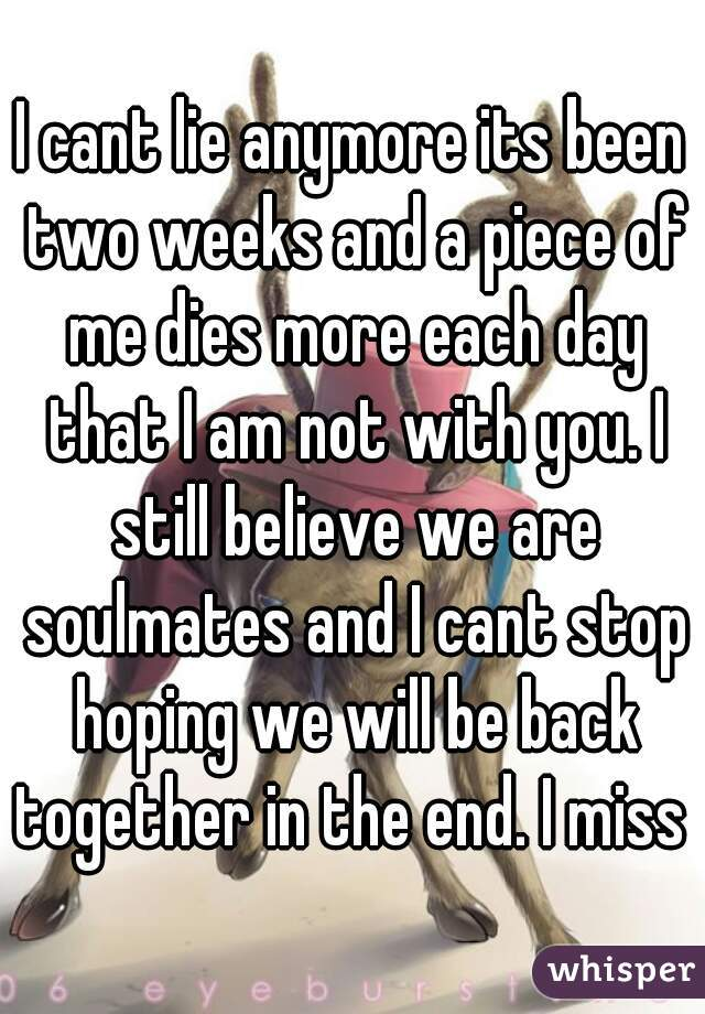 I cant lie anymore its been two weeks and a piece of me dies more each day that I am not with you. I still believe we are soulmates and I cant stop hoping we will be back together in the end. I miss u