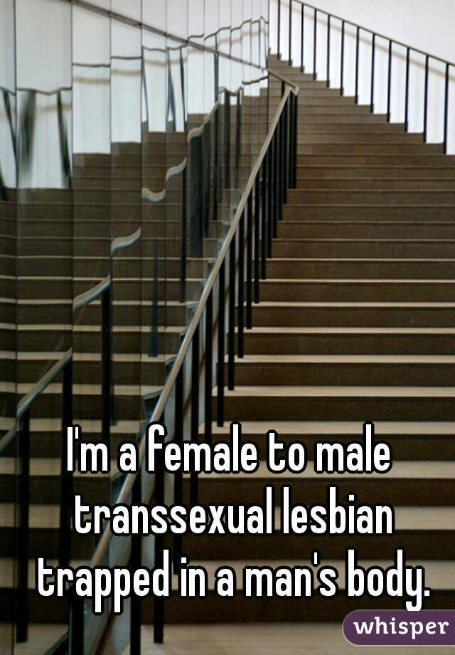 I'm a female to male transsexual lesbian trapped in a man's body.