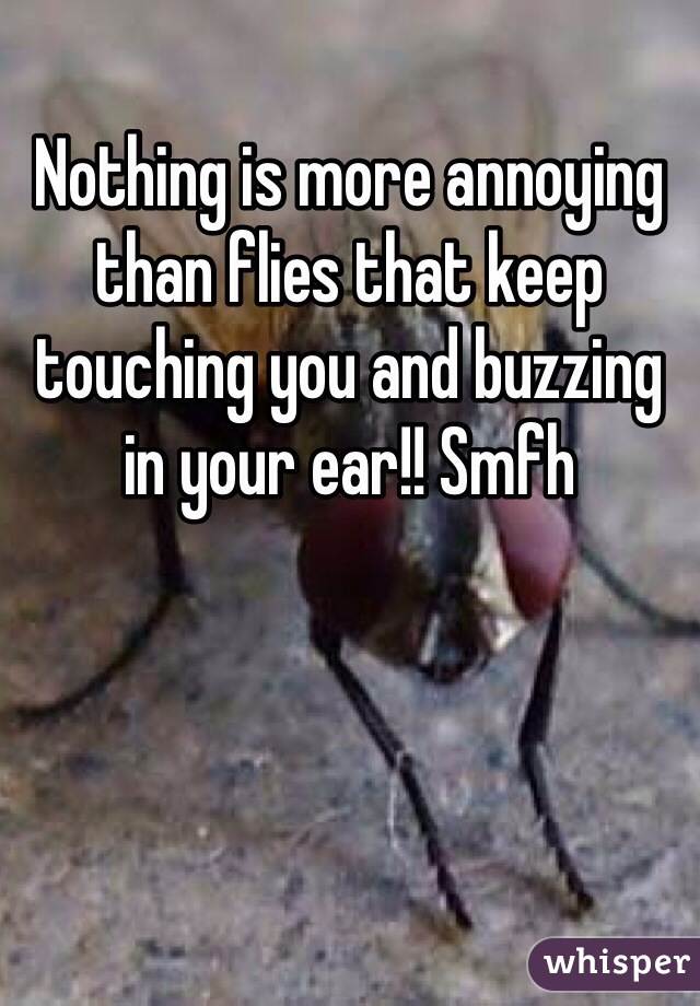 Nothing is more annoying than flies that keep touching you and buzzing in your ear!! Smfh