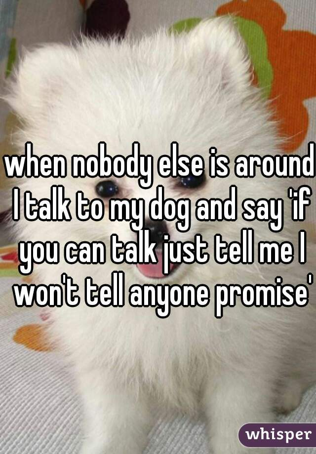 when nobody else is around I talk to my dog and say 'if you can talk just tell me I won't tell anyone promise'