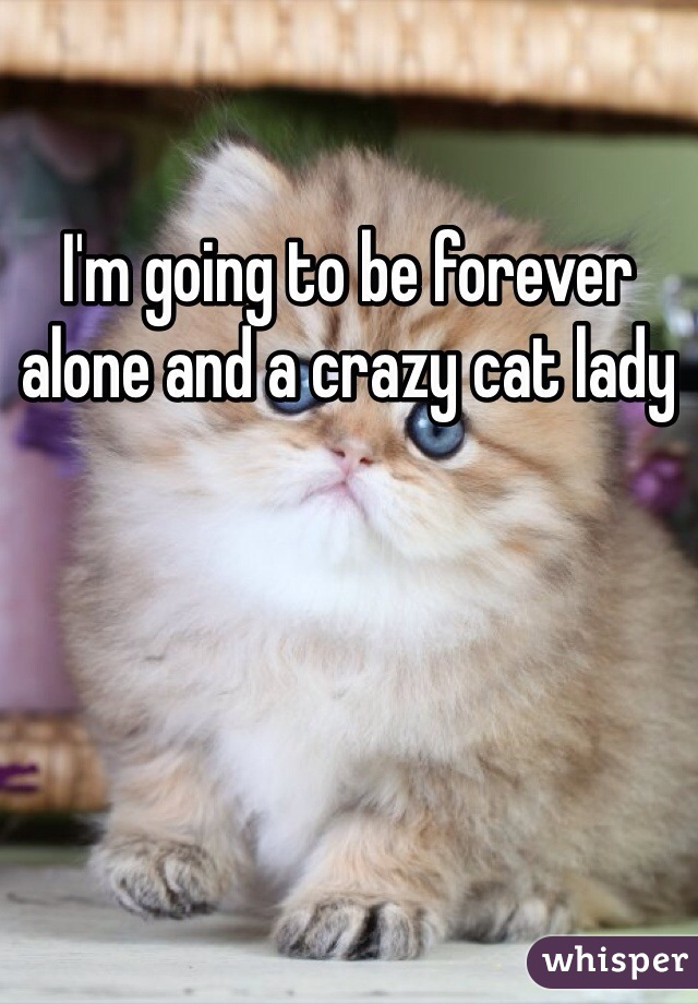 I'm going to be forever alone and a crazy cat lady