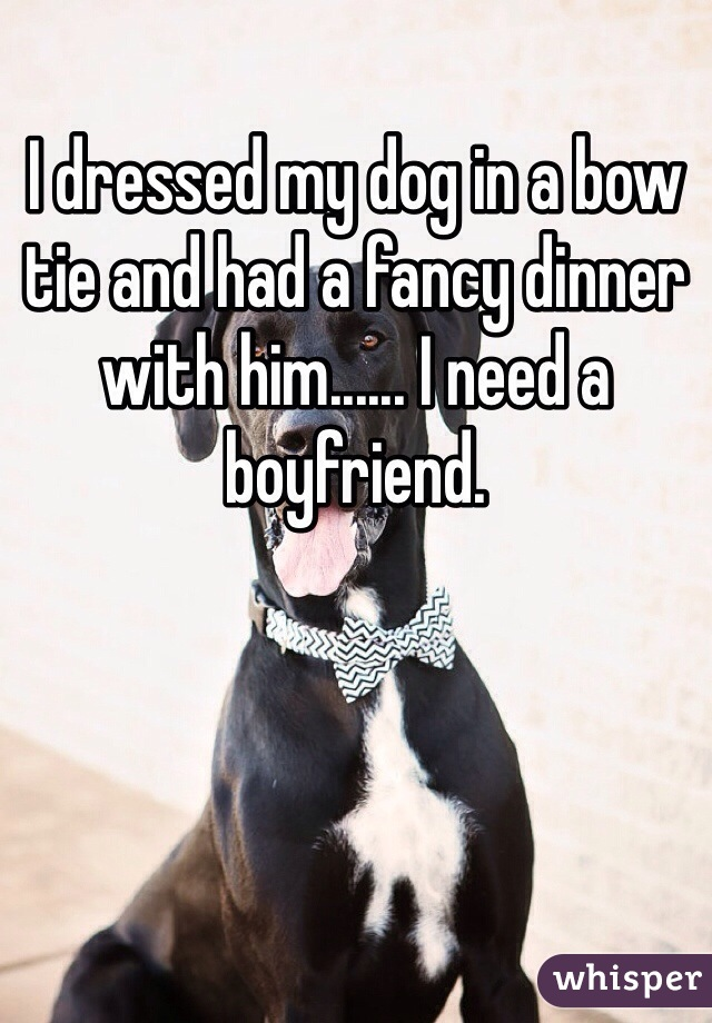 I dressed my dog in a bow tie and had a fancy dinner with him...... I need a boyfriend.