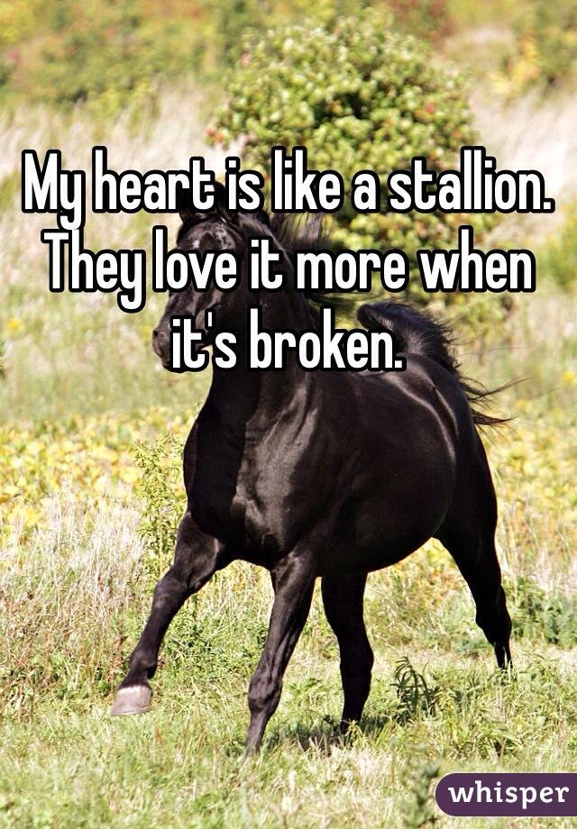 My heart is like a stallion. They love it more when it's broken.