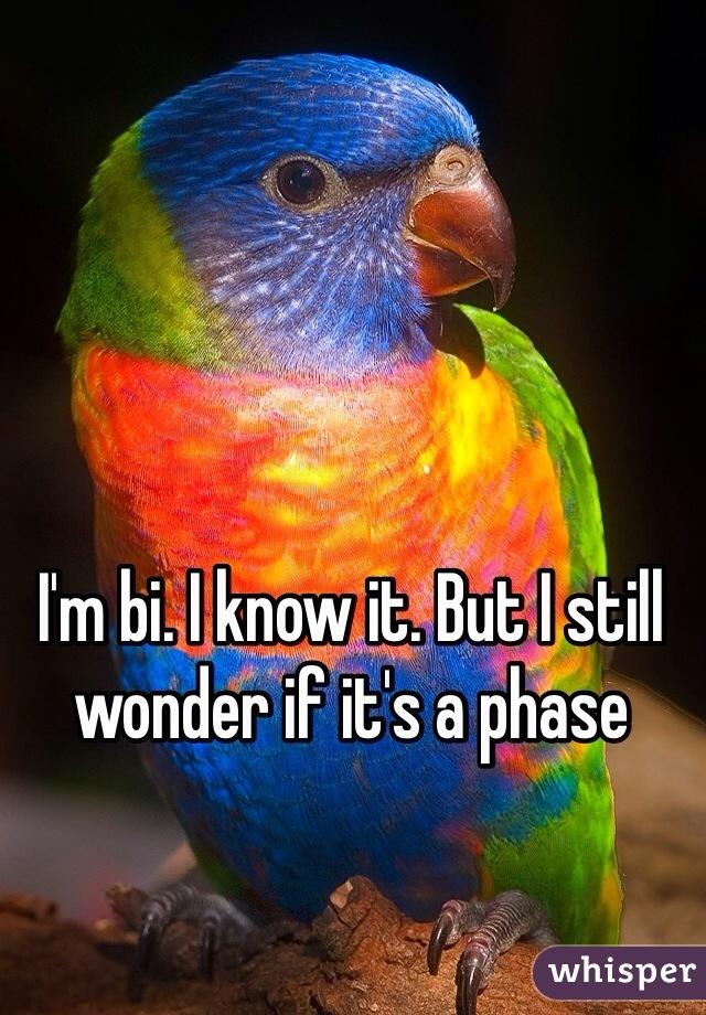 I'm bi. I know it. But I still wonder if it's a phase